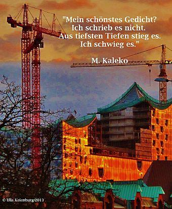 kaleko blog